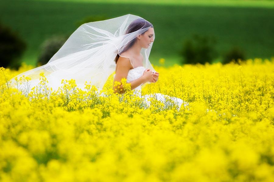 сон мерить одевать свадебное платье процессе аудита эффективности